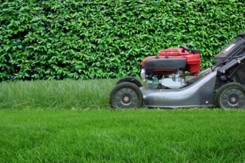 Small Engine & Lawnmower Tip